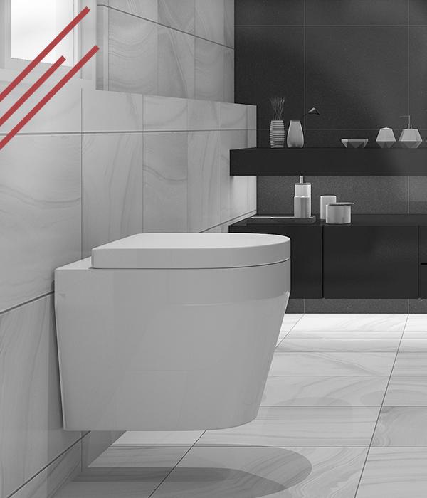 Nieuwe Wc Installeren.Een Toilet Wc Laten Plaatsen In En Om Maasbommel